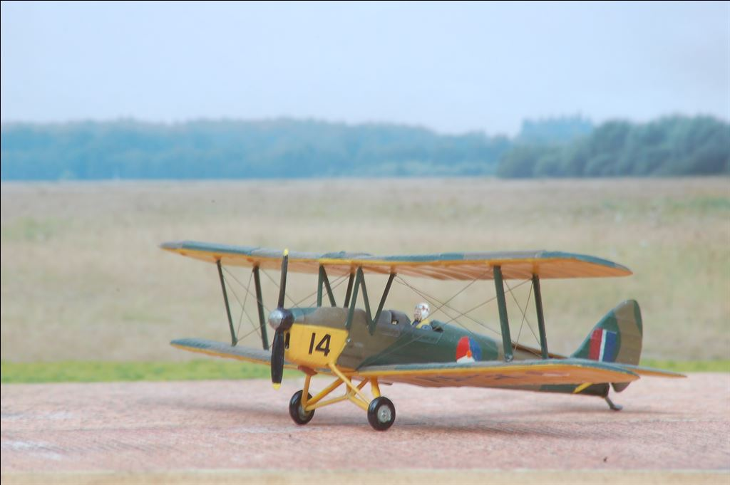 DeHavilland DH-82A Tiger Moth PBanis 1